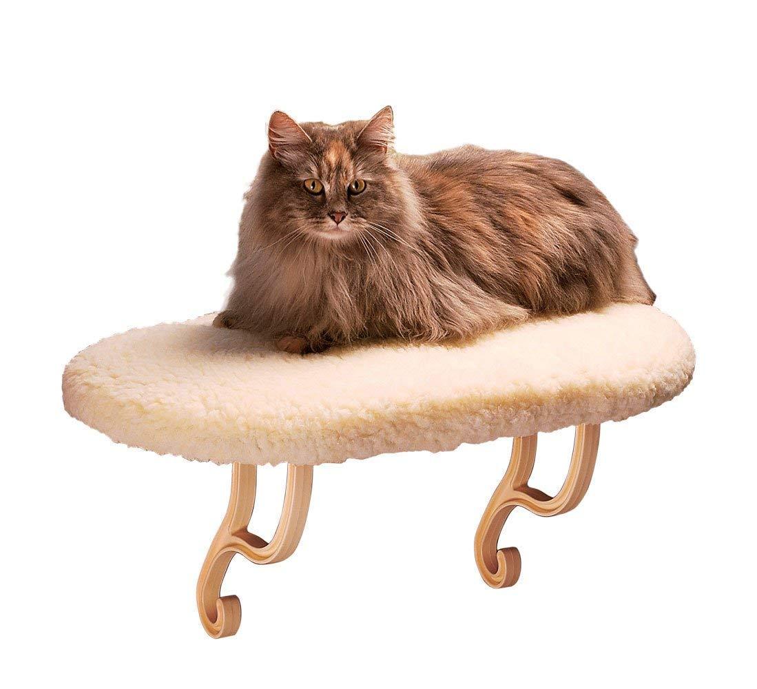 Chelsea Got A Large Cat Window Perch